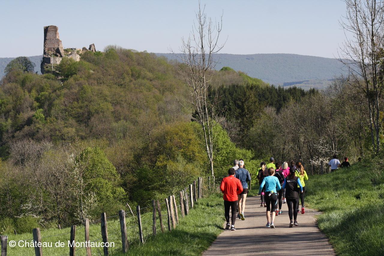 les-coureurs-du-panora-trail-55365de914cfc