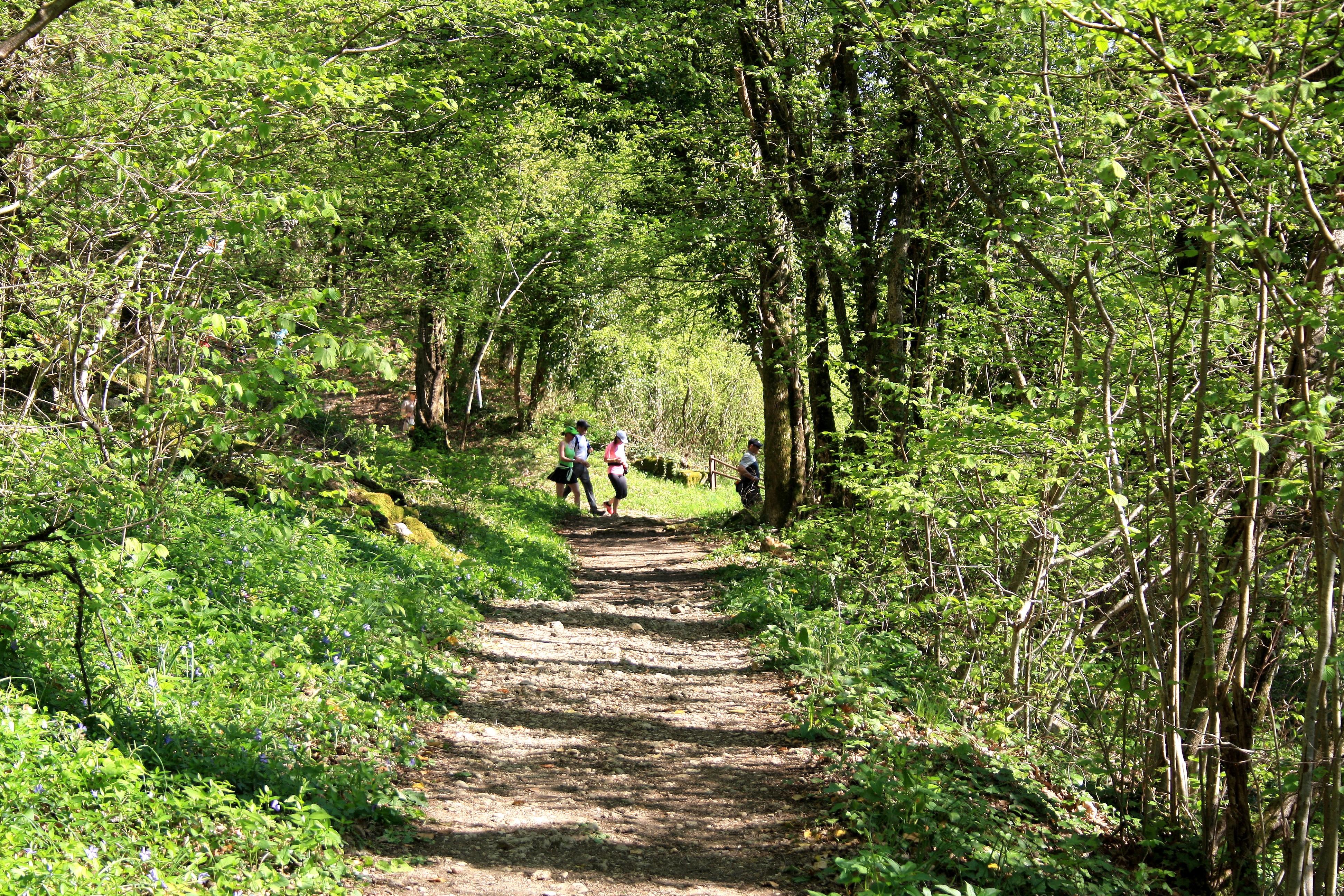 2017-04-09 - Trail-Montfaucon (244) - Copie