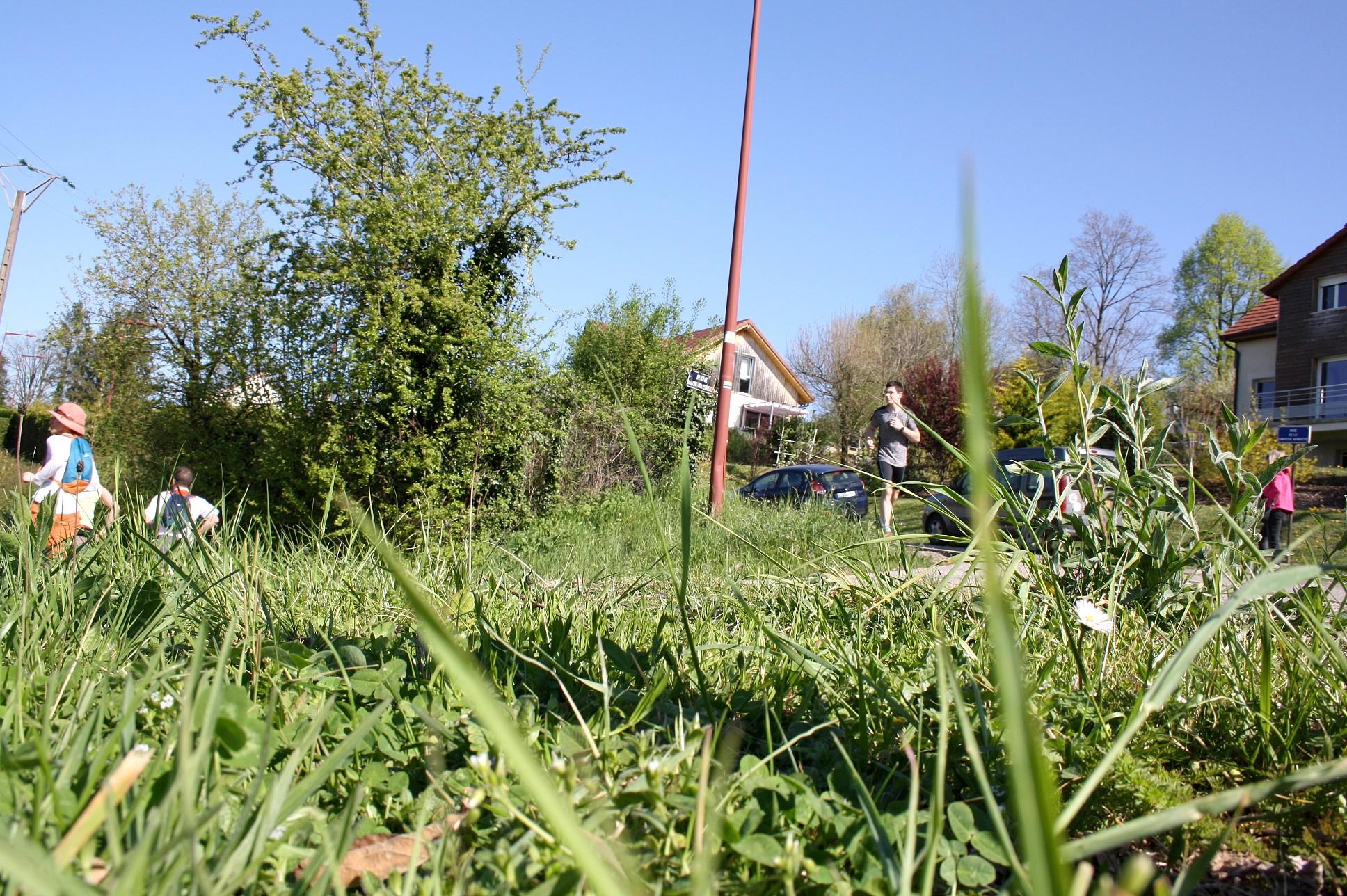 2017-04-09 - Trail-Montfaucon-Juliette (216)